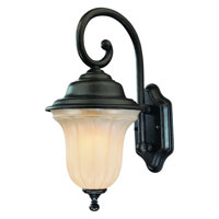 Dolan Designs Helena 1 Light Exterior Wall Lantern in Winchester 9275-68