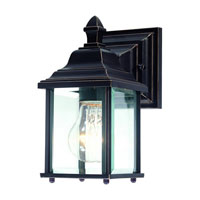 Charleston 1 Light 9 inch Antique Bronze Exterior Wall Lantern in Beveled