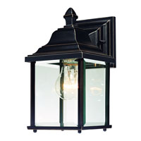 Charleston 1 Light 11 inch Antique Bronze Exterior Wall Lantern in Beveled
