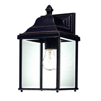 Charleston 1 Light 13 inch Antique Bronze Exterior Wall Lantern in Beveled