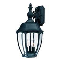 Dolan Designs Roseville 1 Light Exterior Wall Lantern in Black 951-50