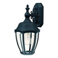 Dolan Designs Roseville 3 Light Exterior Wall Lantern in Black 954-50