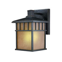 Dolan Designs Barton 1 Light Exterior Wall in Winchester 9715-68