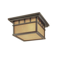Dolan Designs Barton 2 Light Exterior Wall Lantern in Winchester 9719-68