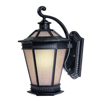 Dolan Designs Vintage 1 Light Exterior Wall Lantern in Winchester 9790-68