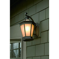 Dolan Designs Vintage 1 Light Exterior Wall Lantern in Winchester 9798-68