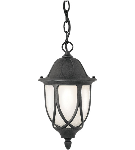 Designers Fountain 2864-BK Capella 1 Light 11 inch Black Outdoor Hanging Lantern photo