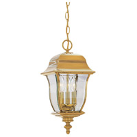 Gladiator 3 Light 10 inch Polished Brass Outdoor Hanging Lantern