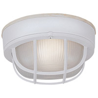 Bulkhead 1 Light 7 inch White Outdoor Flushmount