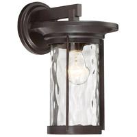 Designers Fountain 23021-SB Brookline 1 Light 13 inch Satin Bronze Outdoor Wall Lantern