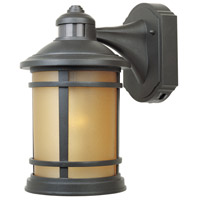 Sedona 1 Light 12 inch Oil Rubbed Bronze Outdoor Wall Lantern