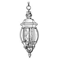Designers Fountain Riviera 3 Light Outdoor Hanging Lantern in Autumn Gold 2414-AG