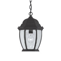 Designers Fountain Tiverton 1 Light Outdoor Hanging Lantern in Black 2434-BK