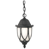 Designers Fountain Capella 1 Light Outdoor Hanging Lantern in Black 2864-BK