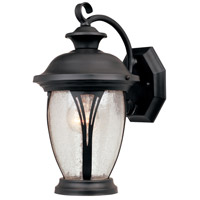 Westchester 1 Light 13 inch Bronze Outdoor Wall Lantern in Seedy