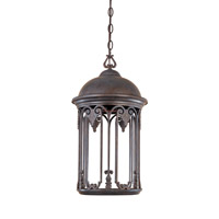 Designers Fountain Barrington 1 Light Outdoor Hanging Lantern (Dark Sky) in Old Bronze 31034-OB