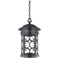Designers Fountain Ellington 1 Light Outdoor Hanging Lantern (Dark Sky) in Oil Rubbed Bronze 31134-ORB