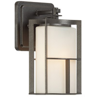 Braxton 1 Light 9 inch Charcoal Outdoor Wall Lantern