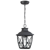 Designers Fountain 34834-BK Belmont 1 Light 8 inch Black Outdoor Hanging Lantern