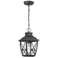 Designers Fountain 34834-BK Belmont 1 Light 8 inch Black Hanging Lantern Ceiling Light