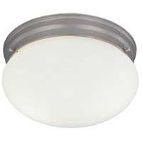 Basic 2 Light 9 inch Pewter Flushmount Ceiling Light