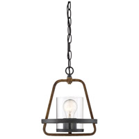 Designers Fountain 93530-FB Ryder 1 Light 9 inch Forged Black Mini Pendant Ceiling Light