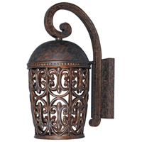 Designers Fountain Amherst 1 Light Outdoor Wall Lantern (Dark Sky) in Burnt Umber 97592-BU