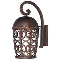 Designers Fountain Amherst 1 Light Outdoor Wall Lantern (Dark Sky) in Burnt Umber 97593-BU