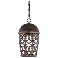 Designers Fountain Amherst 1 Light Outdoor Hanging Lantern (Dark Sky) in Burnt Umber 97594-BU