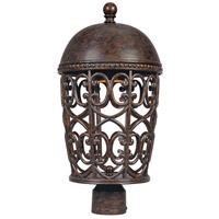 Designers Fountain Amherst 1 Light Post Lantern (Dark Sky) in Burnt Umber 97596-BU