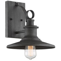 Designers Fountain D207M-10OW-WP Aurora 1 Light 11 inch Weathered Pewter Outdoor Wall Lantern