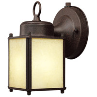 Basic 1 Light 8 inch Rust Patina Outdoor Wall Lantern in Amber