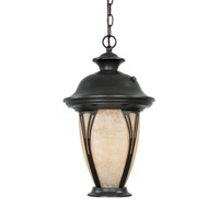 Designers Fountain Westchester 1 Light Outdoor Hanging Lantern in Bronze ES30534-AM-BZ
