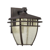 Designers Fountain Drake Outdoor Wall Lantern in Aged Bronze Patina LED30821-ABP