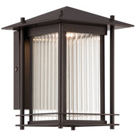 Hadley LED 9 inch Burnished Bronze Outdoor Wall Lantern