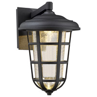 Triton LED 14 inch Black Outdoor Wall Lantern