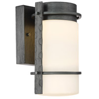 Aldridge LED 11 inch Weathered Iron Outdoor Wall Lantern