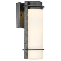 Aldridge LED 14 inch Weathered Iron Outdoor Wall Lantern