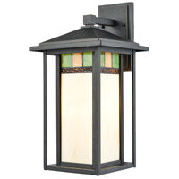 Dale Tiffany TW17029 Tahoe 1 Light 17 inch Golden Black Outdoor Wall Sconce