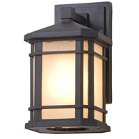 DVI DVP142000BK-SSD Cardiff 1 Light 10 inch Black Outdoor Wall Sconce