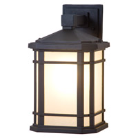 DVI DVP142010BK-SSD Cardiff 1 Light 13 inch Black Outdoor Wall Sconce