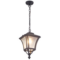 Swansea 1 Light 9 inch Black Outdoor Hanging Light