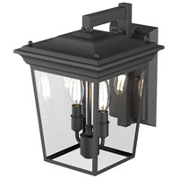 Forest Hill 2 Light Hammered Black Wall Sconce Wall Light
