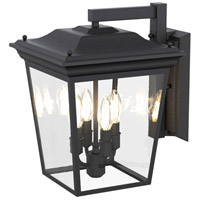 Forest Hill 4 Light Hammered Black Wall Sconce Wall Light