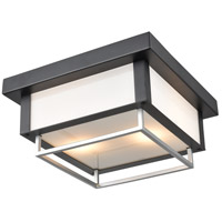 DVI DVP41974BK+SS Ionic Outdoor 2 Light 12 inch Black and Stainless Steel Outdoor Flush Mount