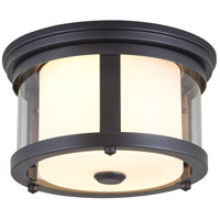 DVI DVP4470HB-CL Niagara 2 Light 12 inch Hammered Black Outdoor Flush Mount