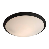 Essex 2 Light 16 inch Graphite Flush Mount Ceiling Light in Opal Glass