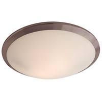 Essex 2 Light 16 inch Oil Rubbed Bronze Flush Mount Ceiling Light in Opal Glass