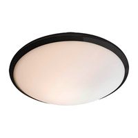DVI Lighting Essex 1 Light Flush Mount in Graphite with Half Opal Glass DVP9030GR-OP