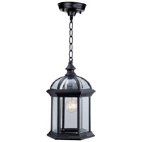 Hexagon 1 Light 8 inch Black Outdoor Chain Hung